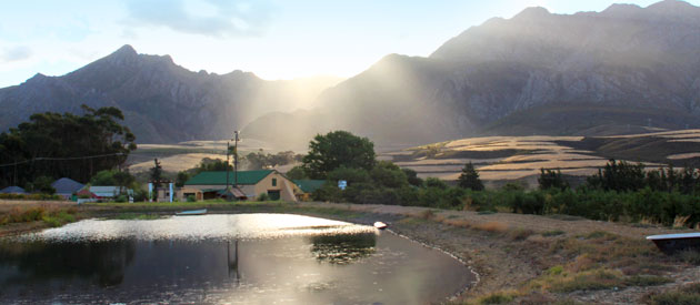 DASBOS BARN - WEDDING VENUE & ACCOMMODATION, VILLIERSDORP